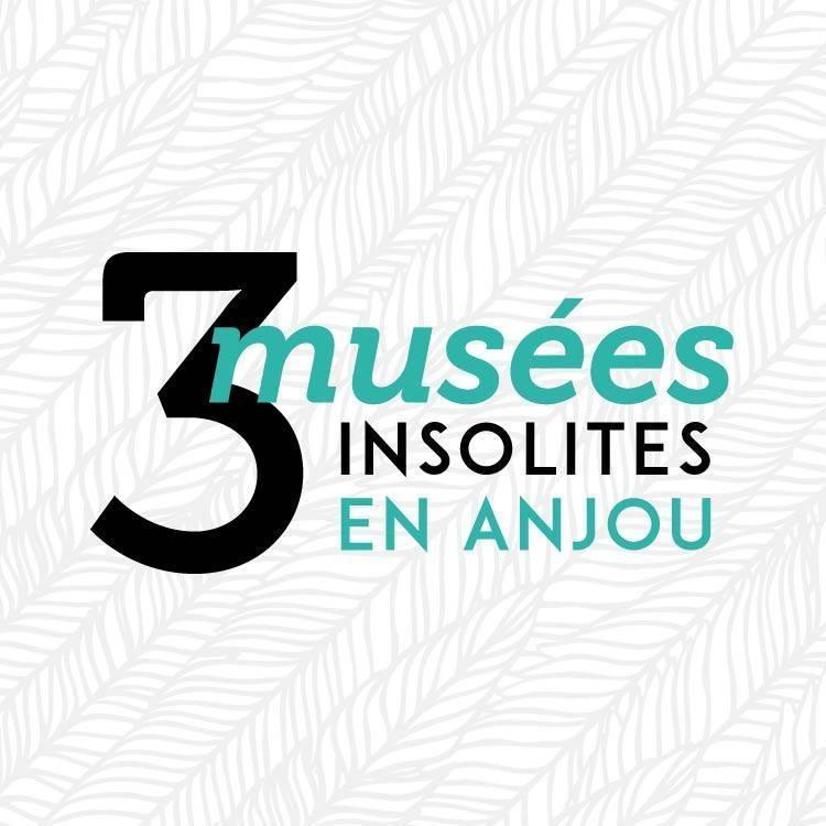 Vacances de la Toussaint - 3 musées insolites en Anjou