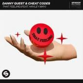 Danny Quest Ft. Cheat Codes Heyley May - That Feeling