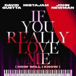 David Guetta Ft. MistaJam & John Newman - If You Really Love Me