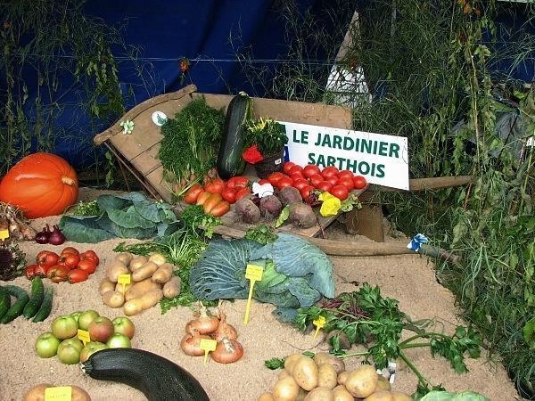 ON EN PARLE ENSEMBLE : DES CONSEILS DE JARDINAGE AVEC LES JARDINIERS SARTHOIS