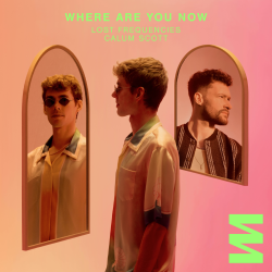 Lost Frequencies Ft. Calum Scott - Where Are You Now