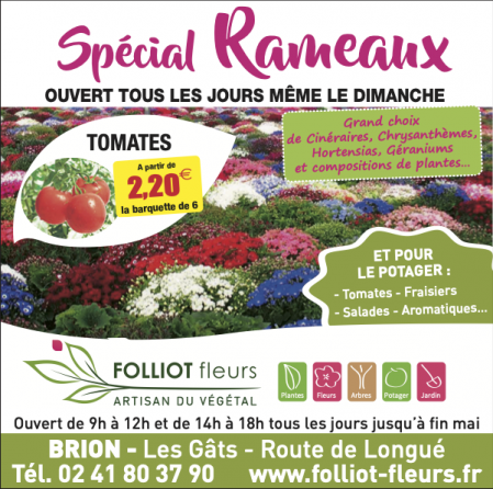 Folliot Fleurs - Brion - Spécial Rameaux
