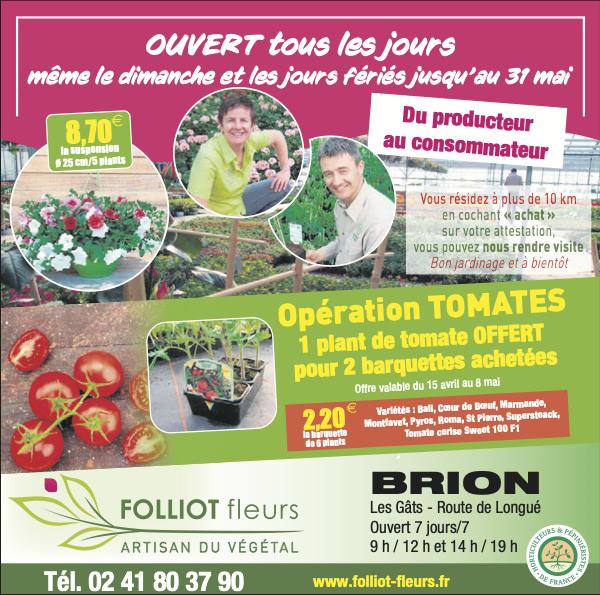 BONS PLANS : OPÉRATION TOMATES CHEZ FOLLIOT FLEURS À BRION (49)