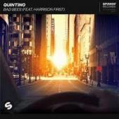 Quintino Ft. Harrison First - Bad Bees